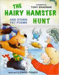The Hairy Hamster Hunt and Other Pet Poems